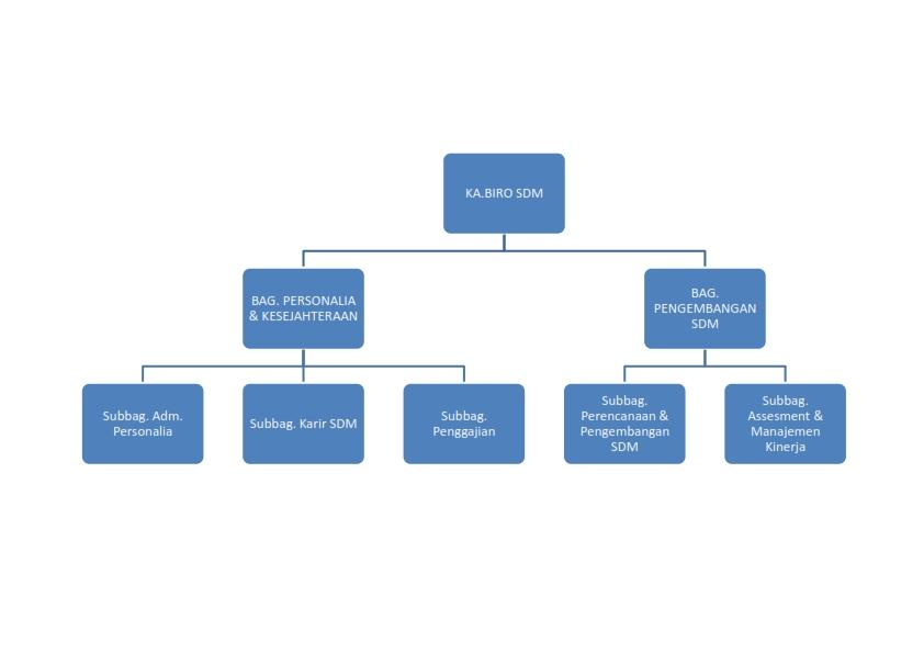 struktur organisasi sdm_001