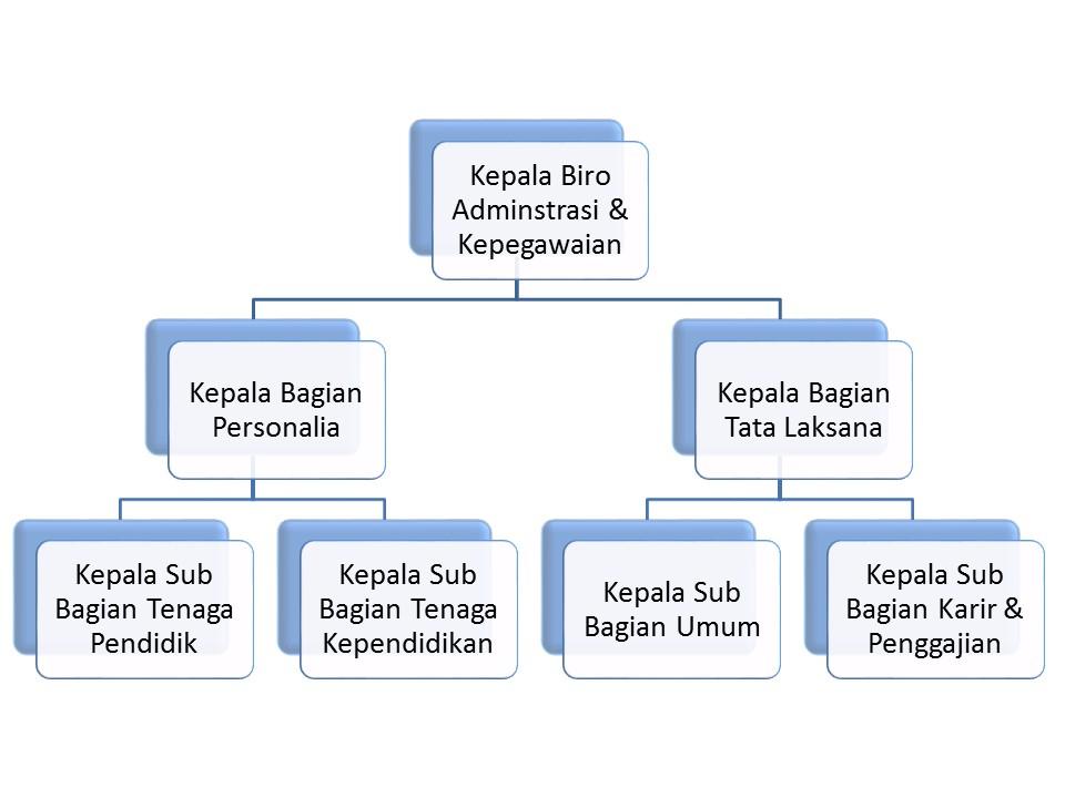 Struktur Biro Administrasi & Kepegawaian